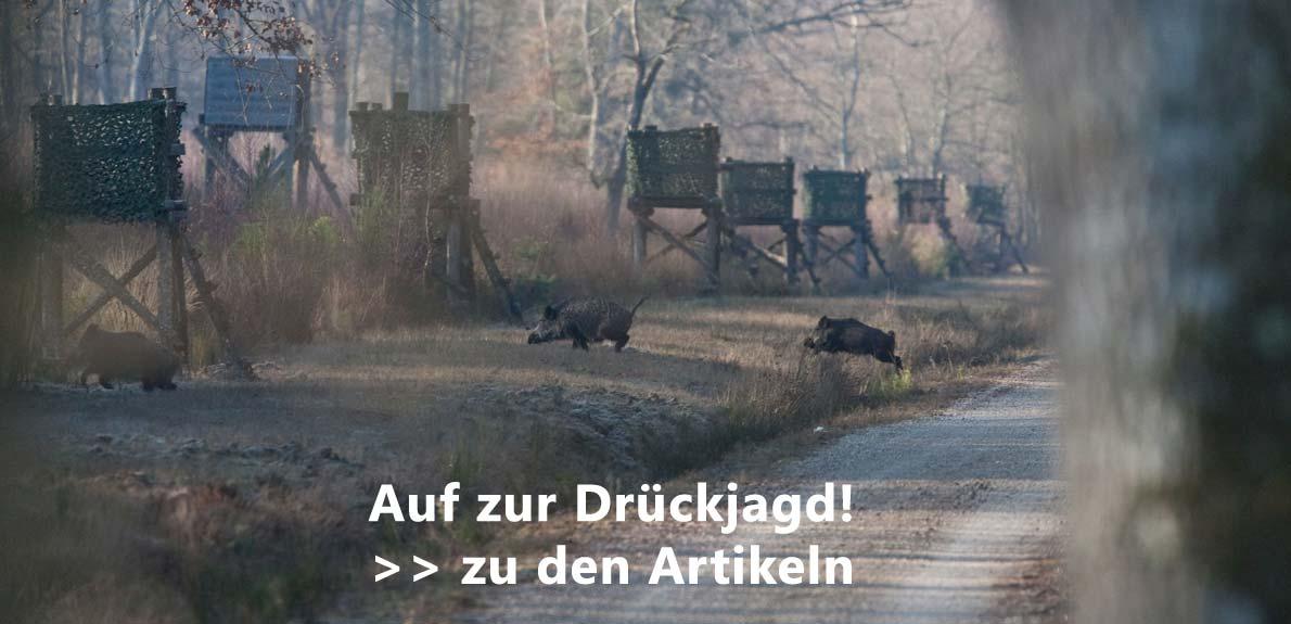 Banner Drueckjagd