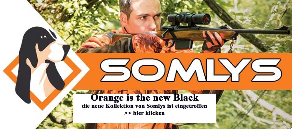 Banner Somlys